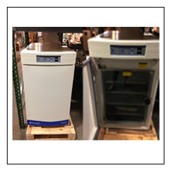 Fisher Scientific Isotemp CO2 Incubator