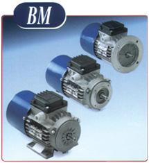 BM Series Motors