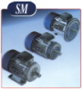 SMX Series (High Efficiency Motors)